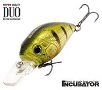 Изображение Incubator Rush 120