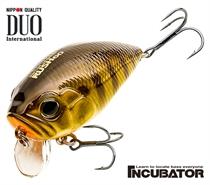 Изображение Incubator Rush 60